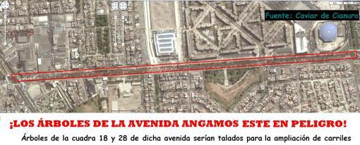 Avenida Angamos Este